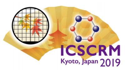 ICSCRM 2019