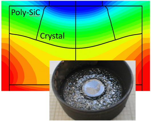 Modeling of poly-SiC deposits in PVT